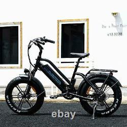 20Fat Tire 750W 48V 16Ah Battery Electric Bicycle Bike Addmotor M-50 City EBike